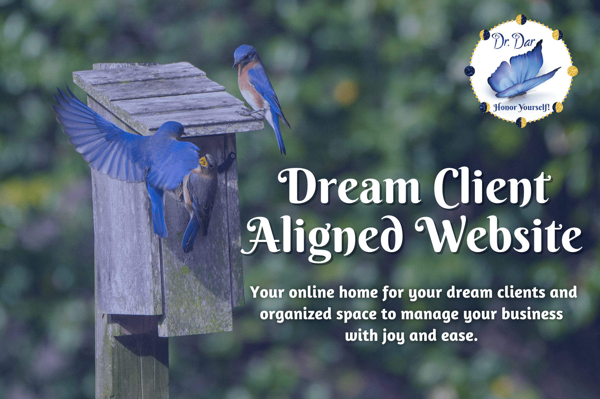 Dream Client Aligned Websites - Design and Advisory - Dr. Dar Hawks