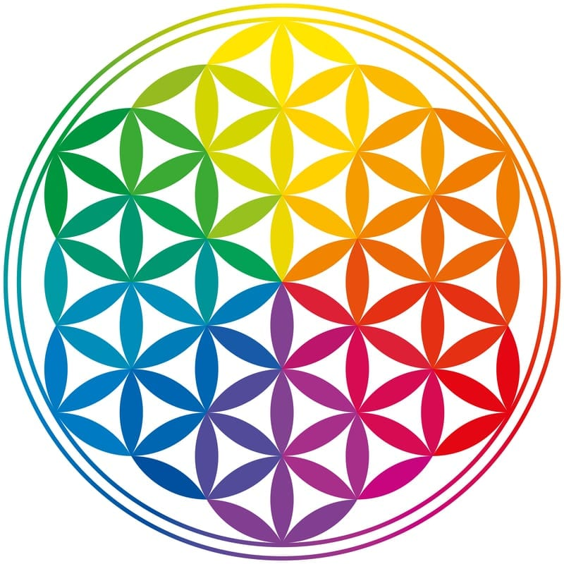 Flower of Life - Dr. Dar Hawks - DT